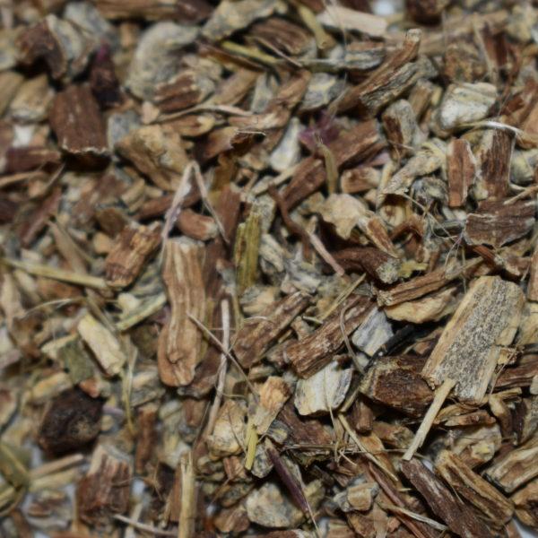 echinacea-angu-root
