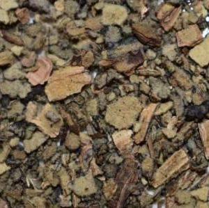 mullein-leaf